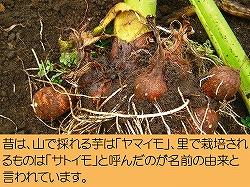 2014_12_2