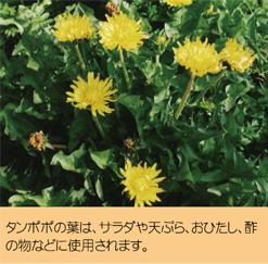 2015_05_2